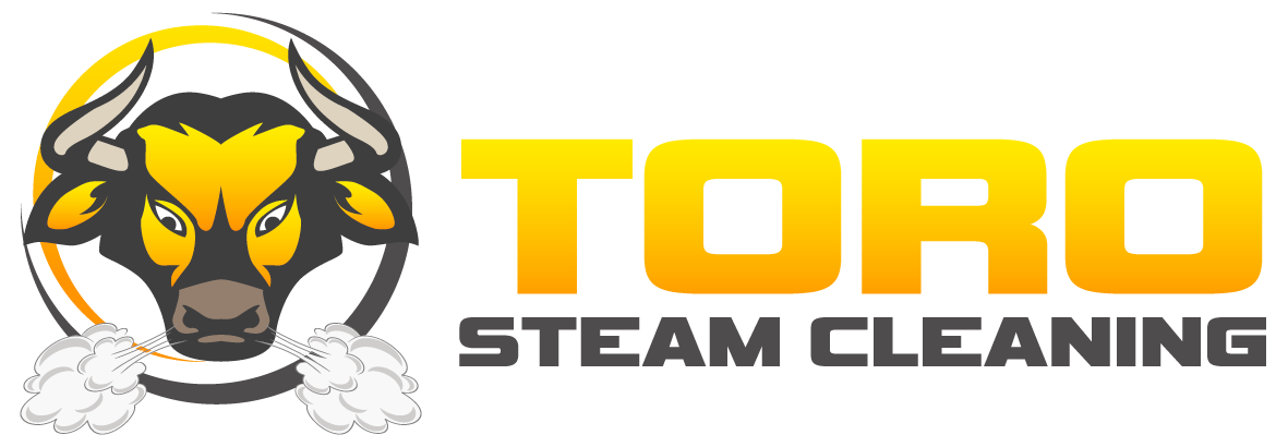 Toro Steam Cleaning