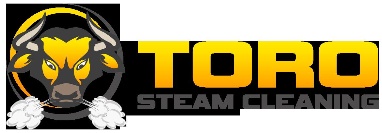 Toro Steam Cleaning